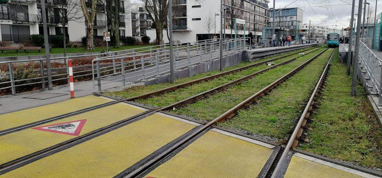 Neuer NVP für die Stadt Frankfurt